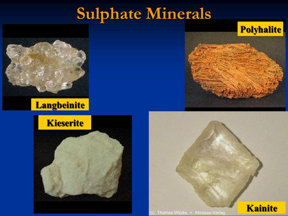 Sulphate Minerals Polyhalite Langbeinite Kieserite Kainite