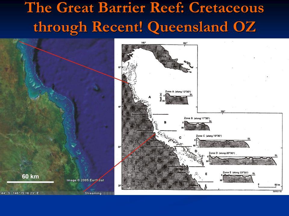 The Great Barrier Reef: Cretaceous through Recent! Queensland OZ