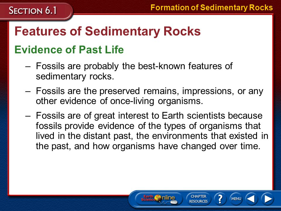 Features of Sedimentary Rocks