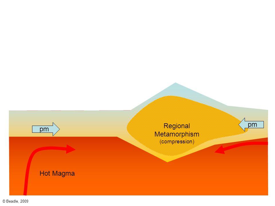 Regional Metamorphism (compression)