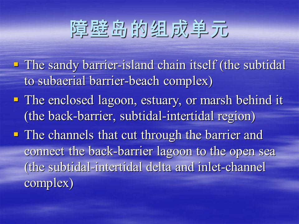 障壁岛的组成单元 The sandy barrier-island chain itself (the subtidal to subaerial barrier-beach complex)