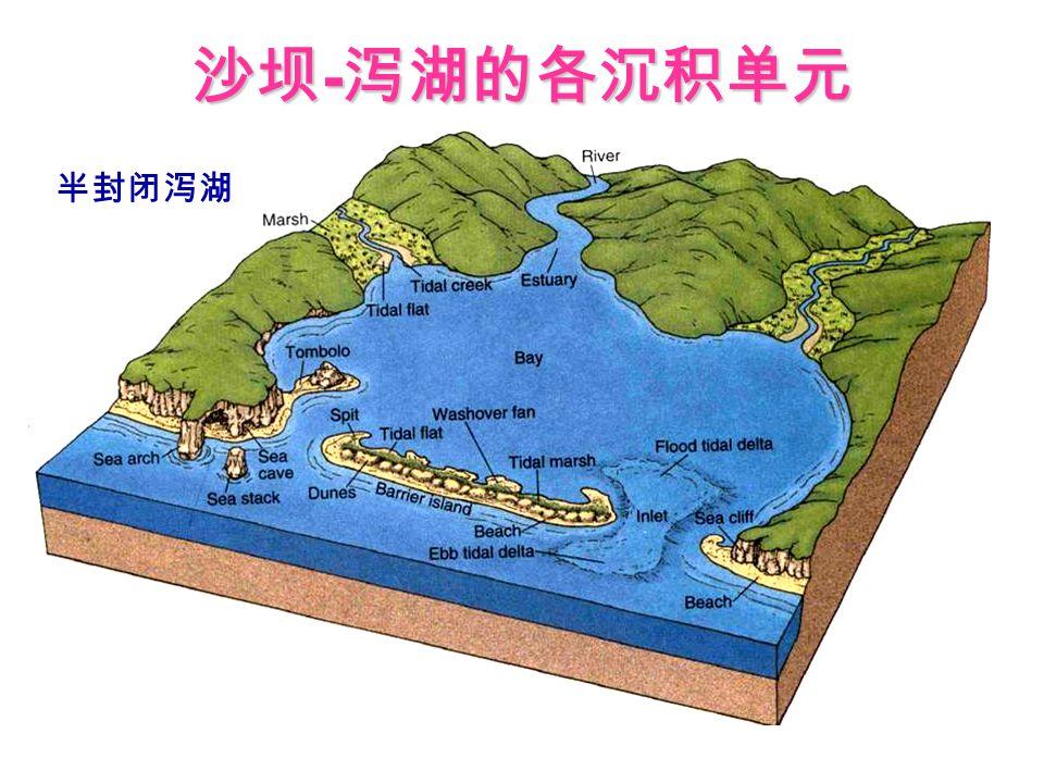 沙坝-泻湖的各沉积单元 半封闭泻湖