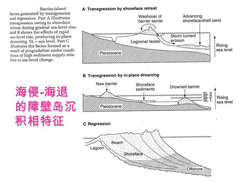 海侵-海退的障壁岛沉积相特征