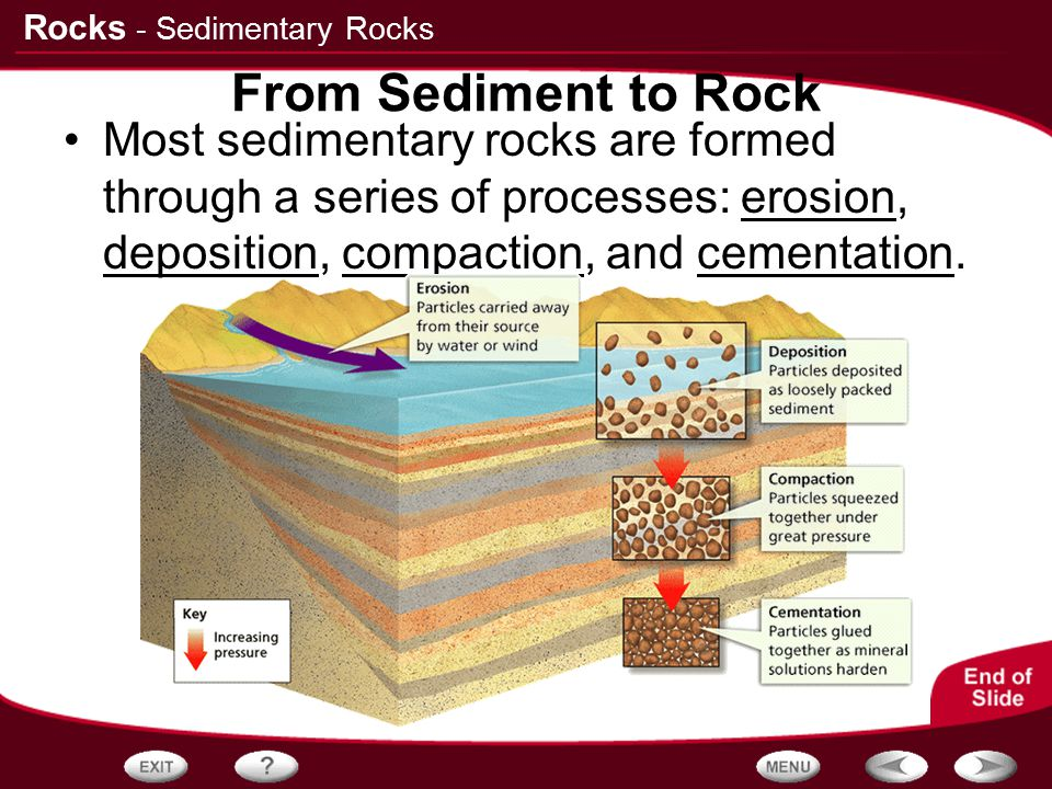 - Sedimentary Rocks From Sediment to Rock.