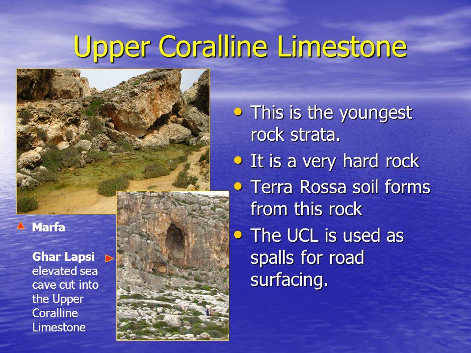 Upper Coralline Limestone