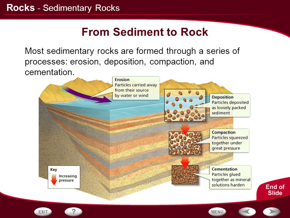 From Sediment to Rock - Sedimentary Rocks