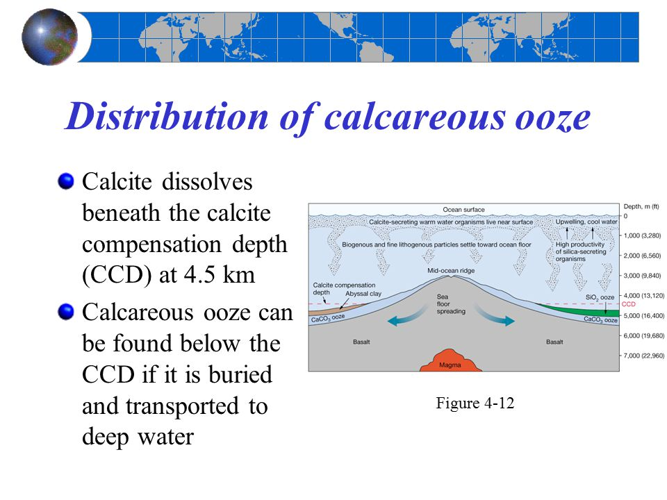 Distribution of calcareous ooze