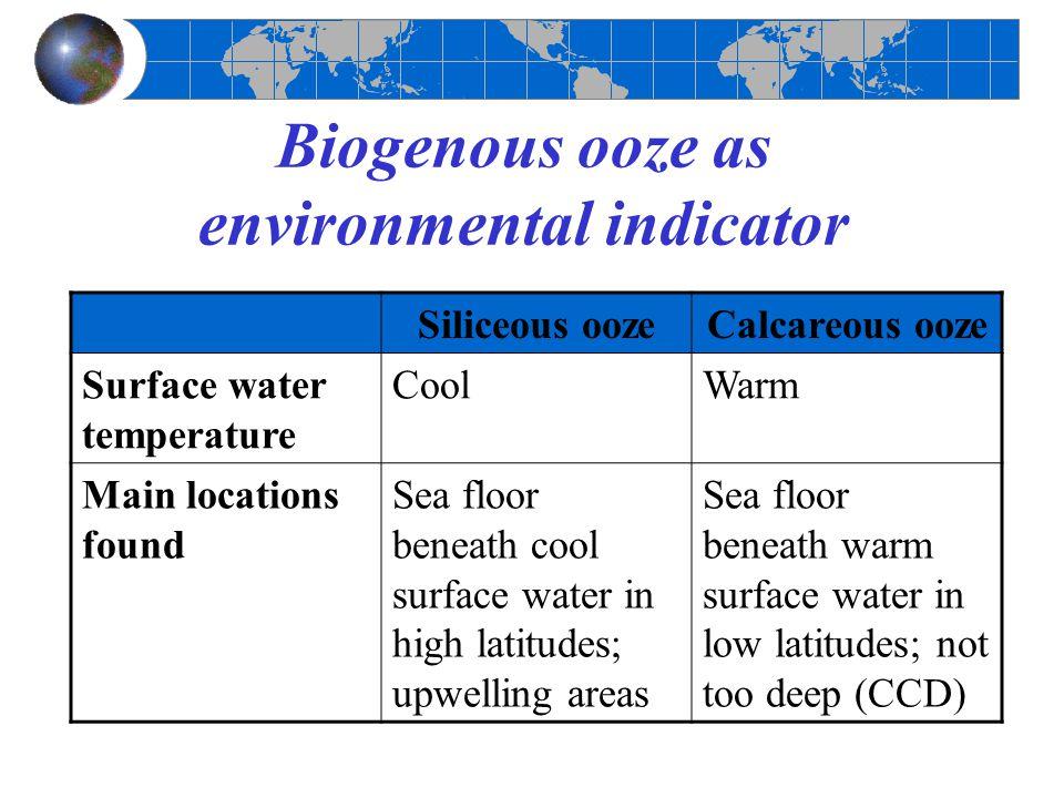 Biogenous ooze as environmental indicator