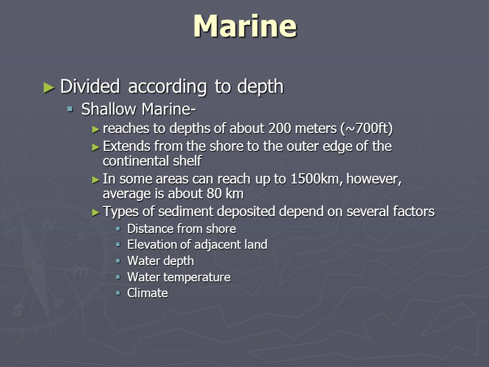 Marine Divided according to depth Shallow Marine-