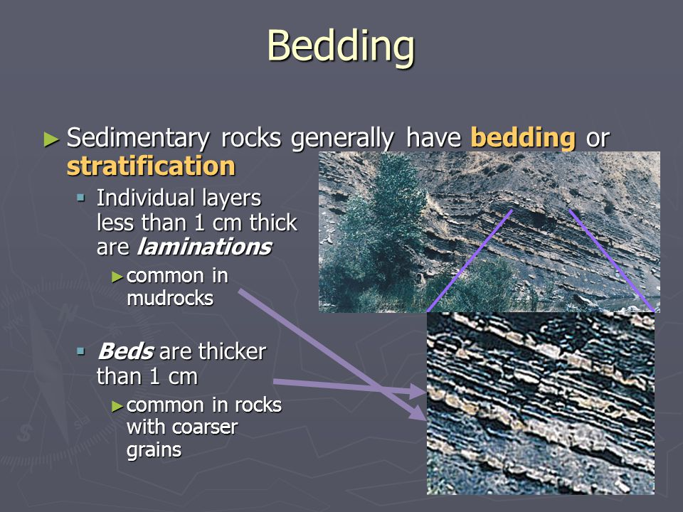 Bedding Sedimentary rocks generally have bedding or stratification