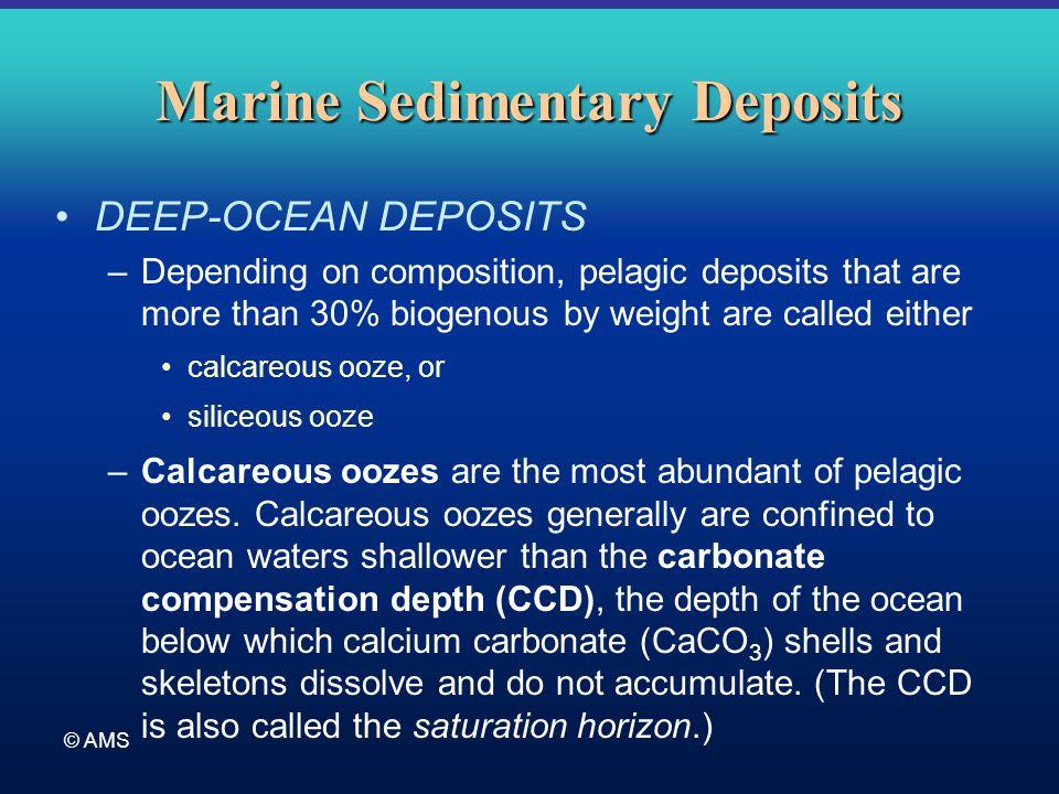 deep marien sediments Full-text paper (pdf): the onset of fabric development in deep marine sediments.