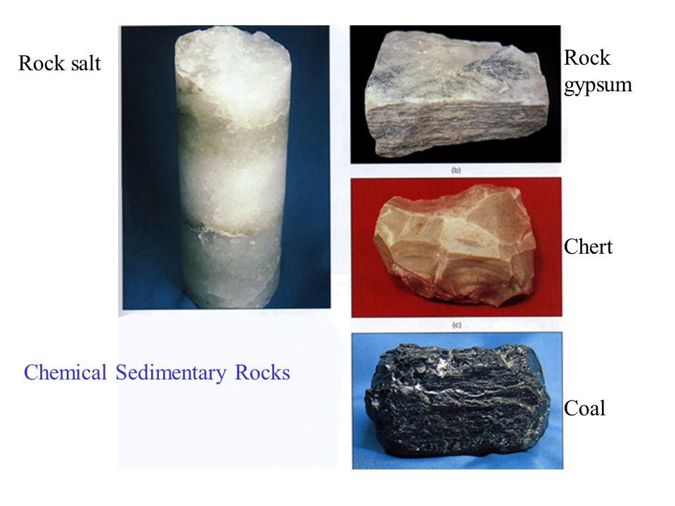 Rock gypsum Chert Coal Rock salt Chemical Sedimentary Rocks