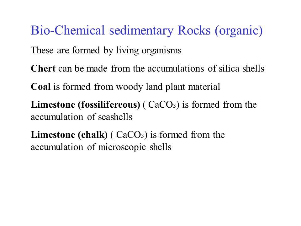 Bio-Chemical sedimentary Rocks (organic)