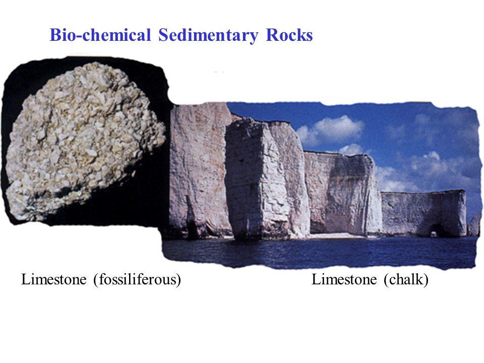 Bio-chemical Sedimentary Rocks