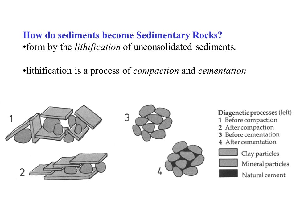 How do sediments become Sedimentary Rocks