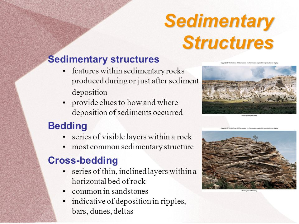 Sedimentary Structures Sedimentary structures Bedding Cross-bedding