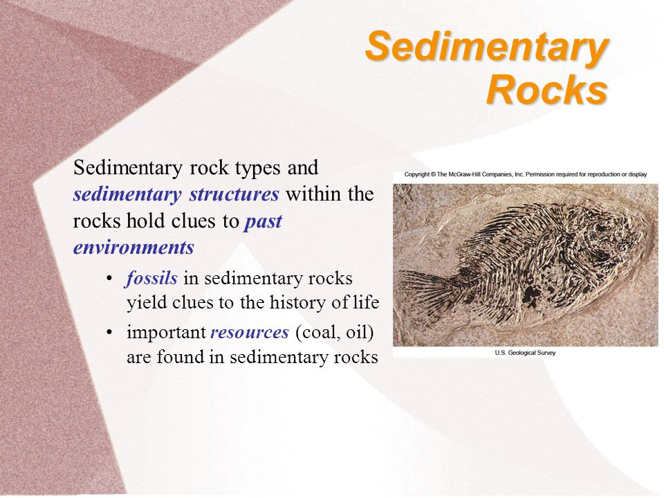 Sedimentary Rocks. Sedimentary rock types and sedimentary structures within the rocks hold clues to past environments.