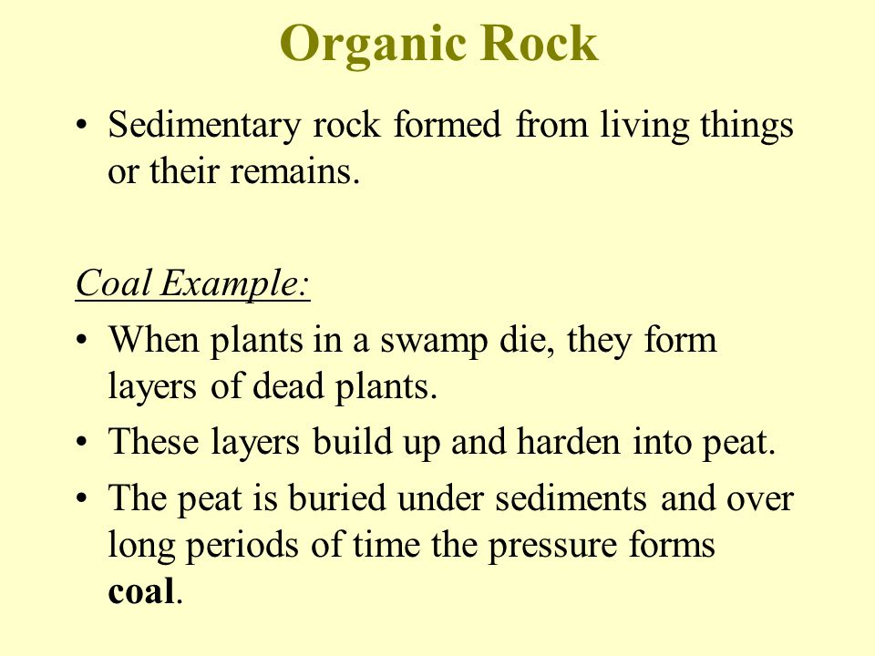 Organic Rock Sedimentary rock formed from living things or their remains. Coal Example:
