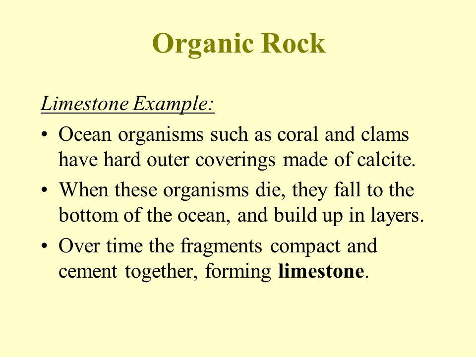Organic Rock Limestone Example:
