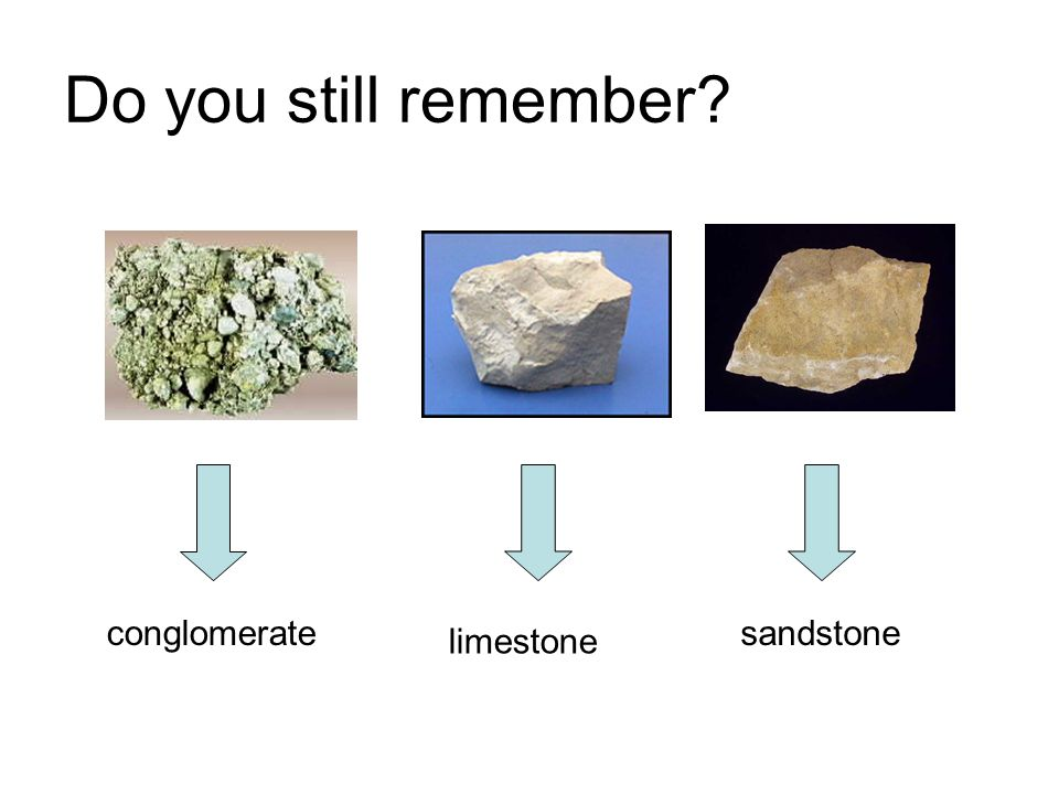 Do you still remember conglomerate sandstone limestone