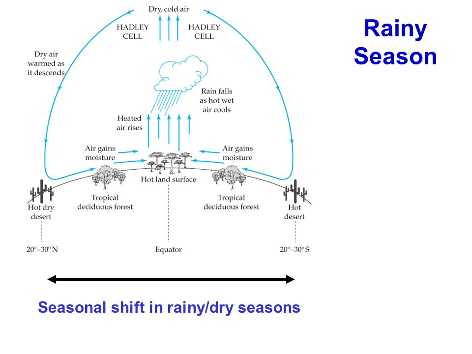 Seasonal shift in rainy/dry seasons