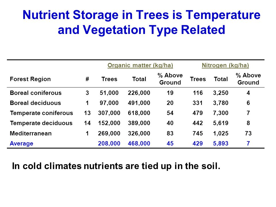 Nutrient Storage in Trees is Temperature and Vegetation Type Related