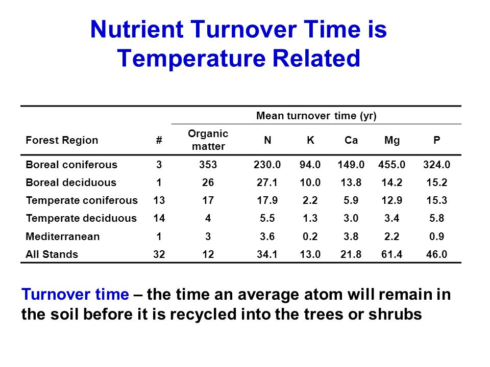 Nutrient Turnover Time is Temperature Related