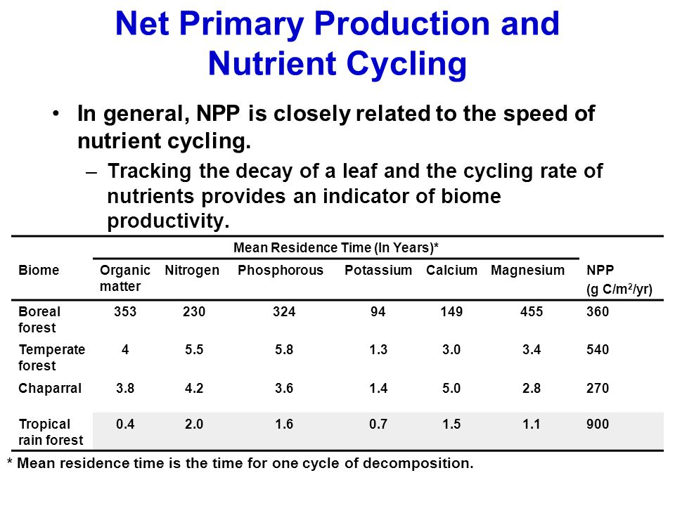 Net Primary Production and Nutrient Cycling