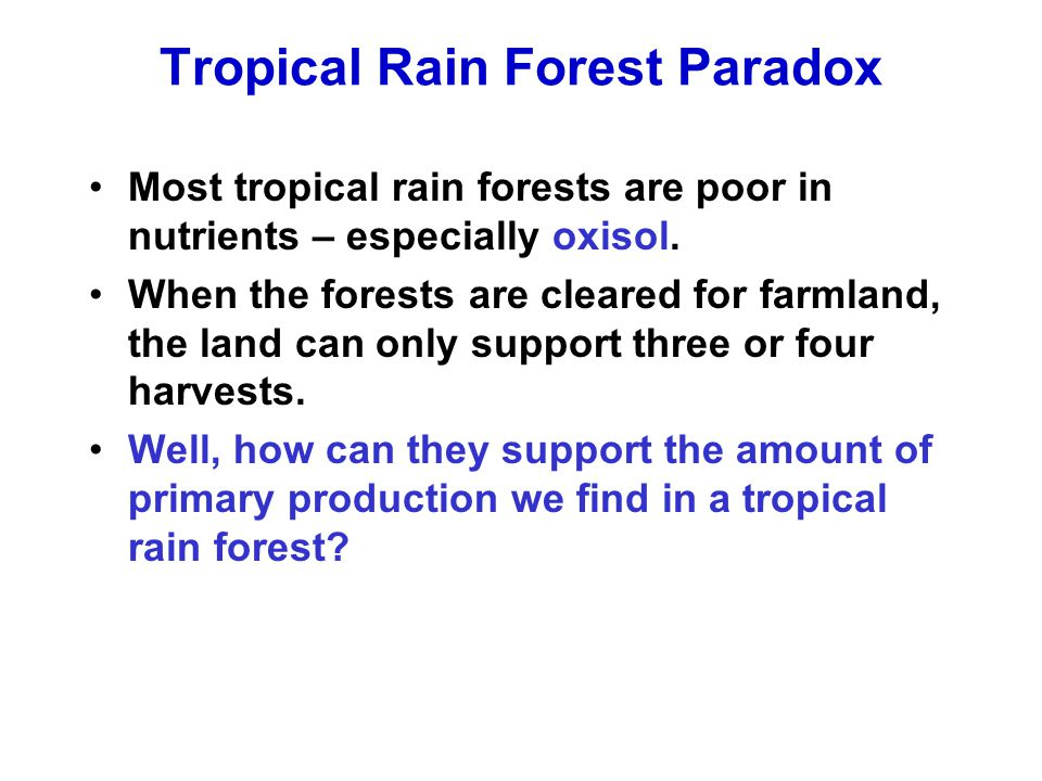 Tropical Rain Forest Paradox