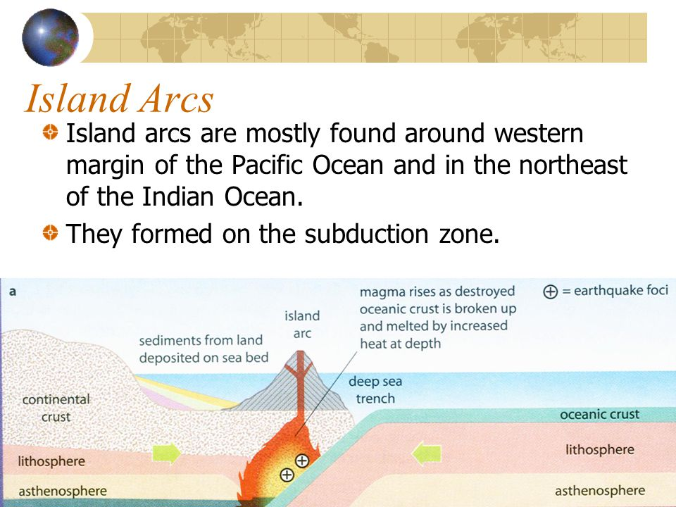 Island Arcs Island arcs are mostly found around western margin of the Pacific Ocean and in the northeast of the Indian Ocean.