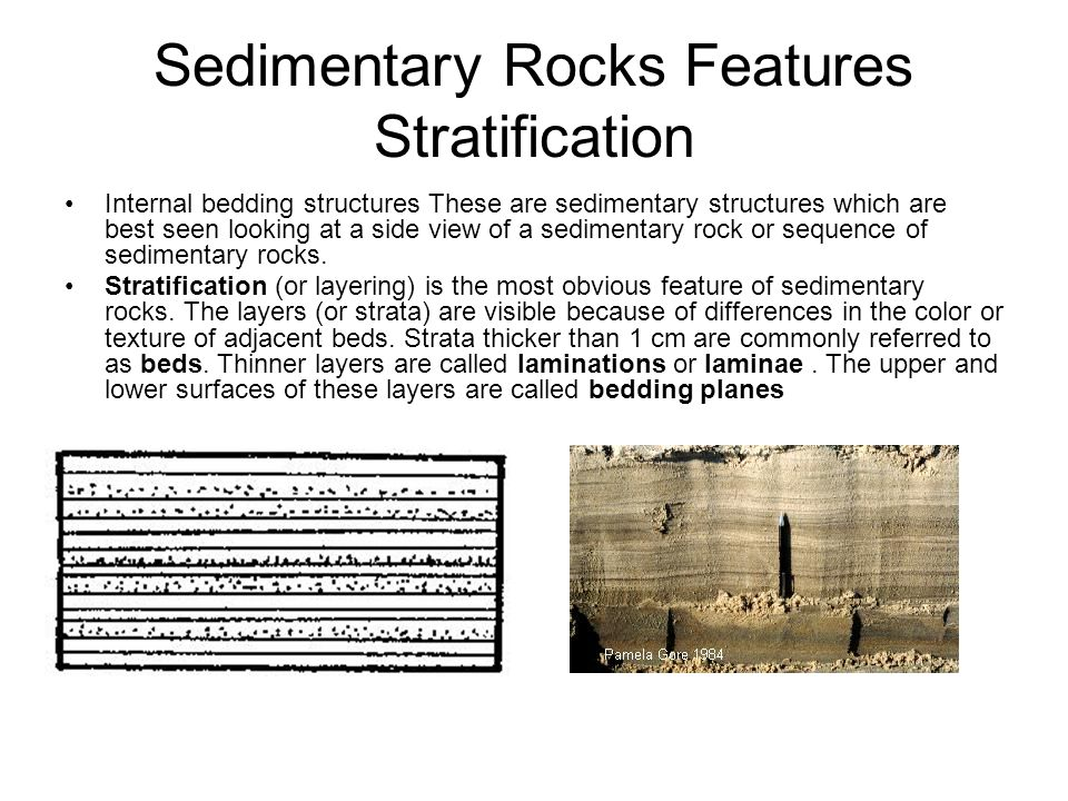 Sedimentary Rocks Features Stratification
