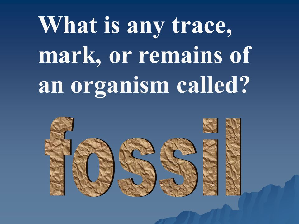 What is any trace, mark, or remains of an organism called