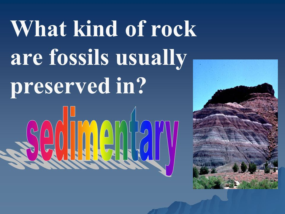 What kind of rock are fossils usually preserved in