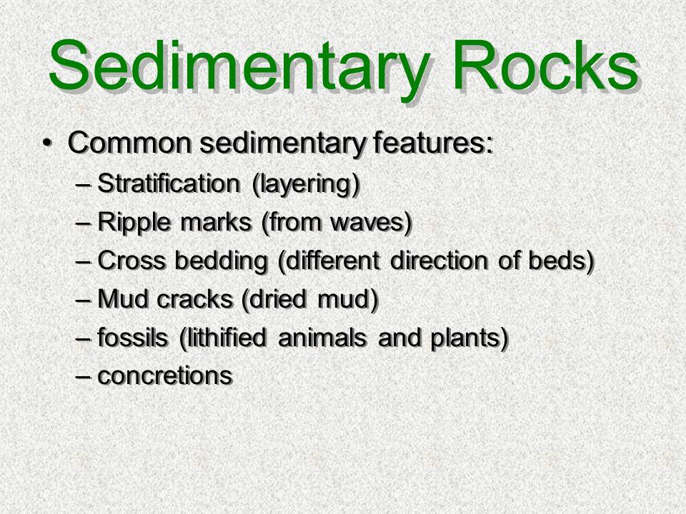 Sedimentary Rocks Common sedimentary features: