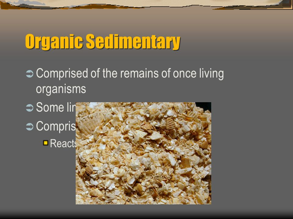 Organic Sedimentary Comprised of the remains of once living organisms