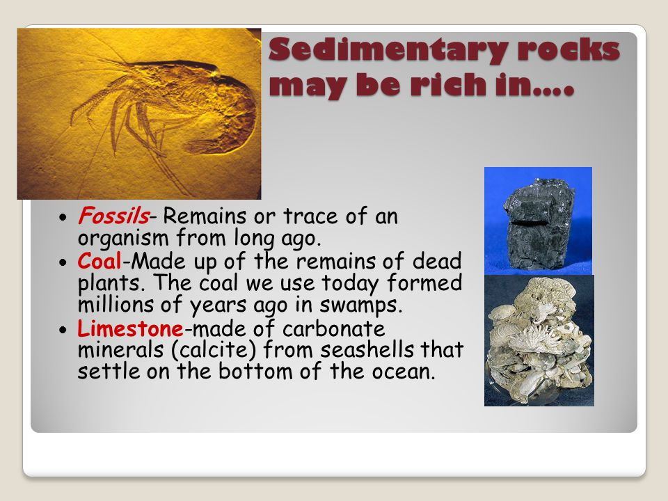 Sedimentary rocks may be rich in….