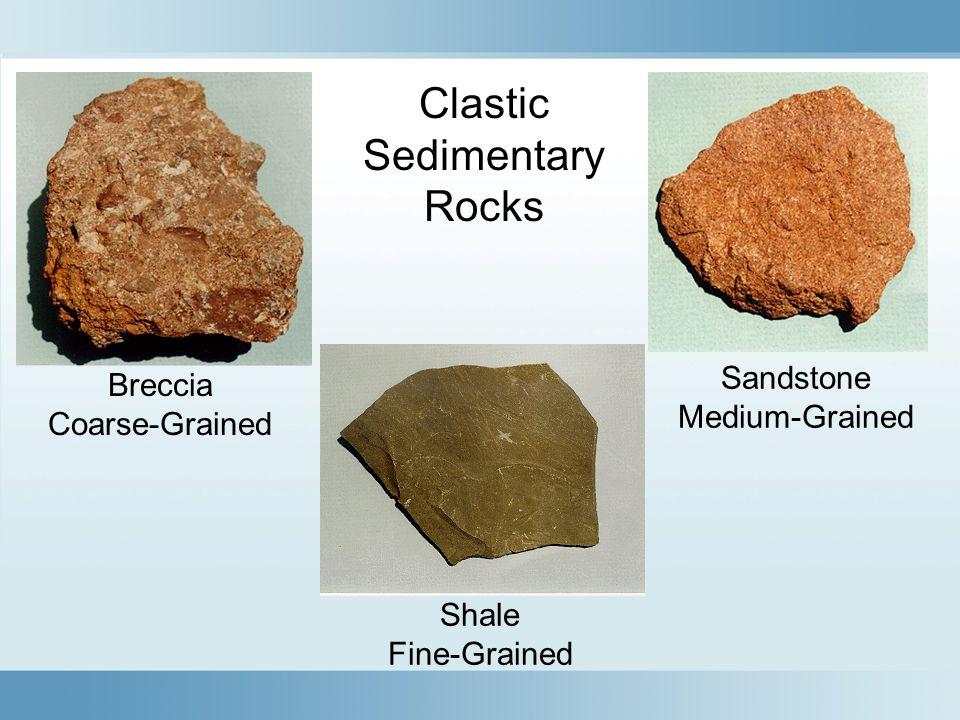 Clastic Sedimentary Rocks Sandstone Breccia Medium-Grained