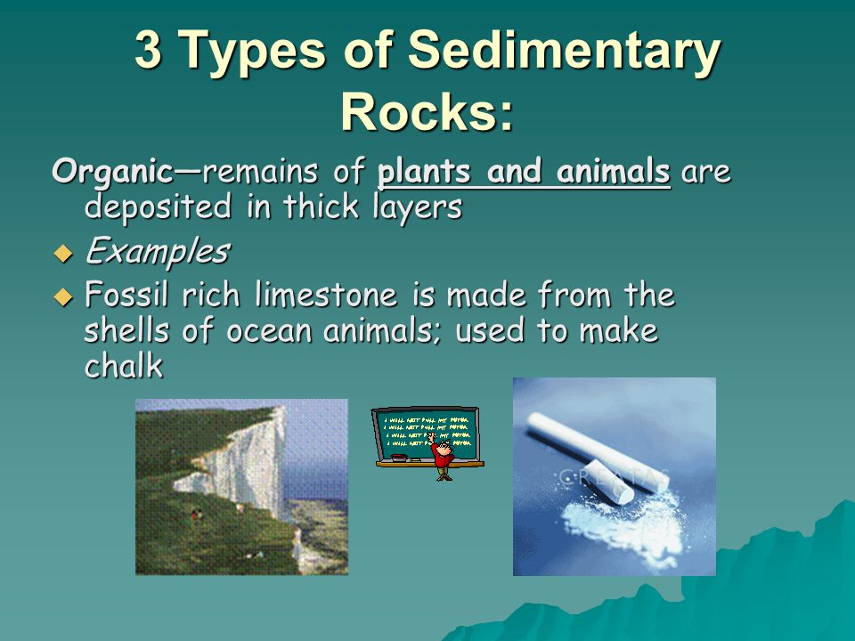 3 Types of Sedimentary Rocks: