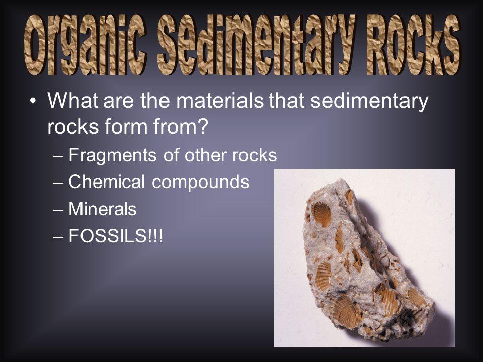 Organic Sedimentary Rocks
