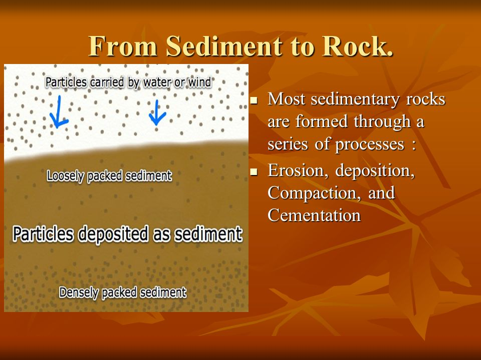 From Sediment to Rock.