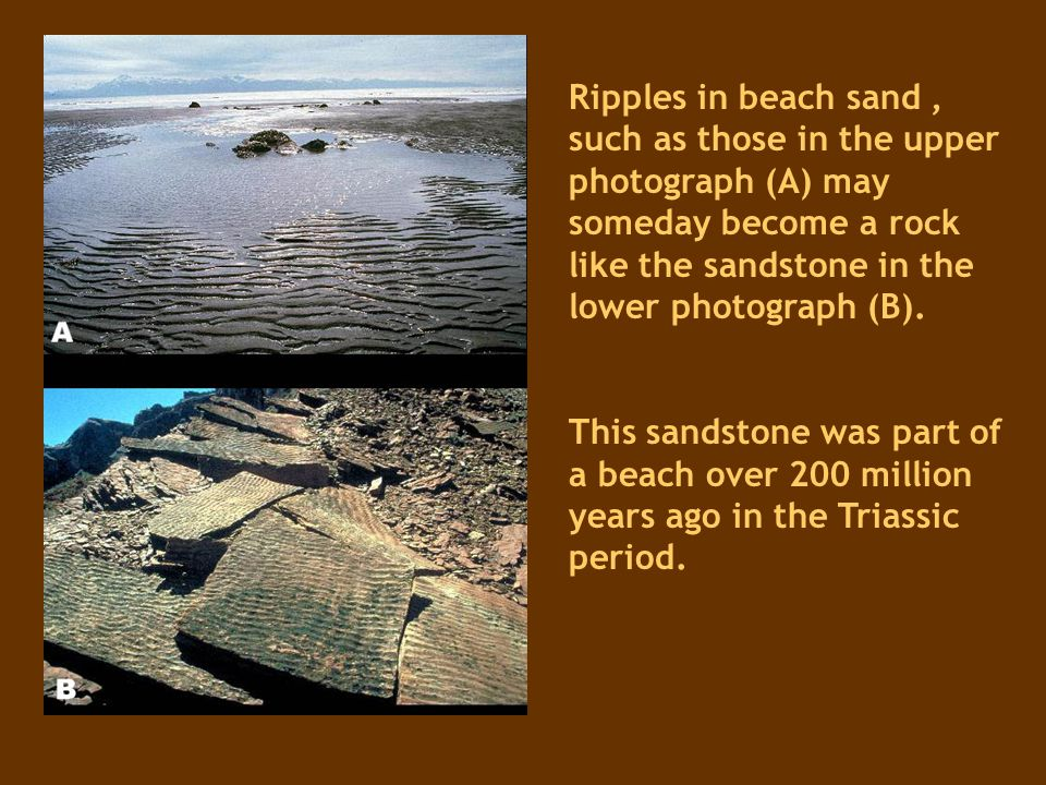 Ripples in beach sand , such as those in the upper photograph (A) may someday become a rock like the sandstone in the lower photograph (B).