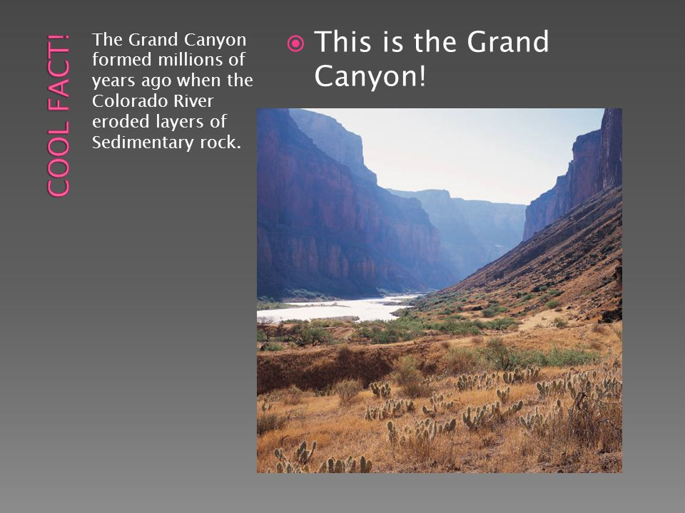 This is the Grand Canyon!