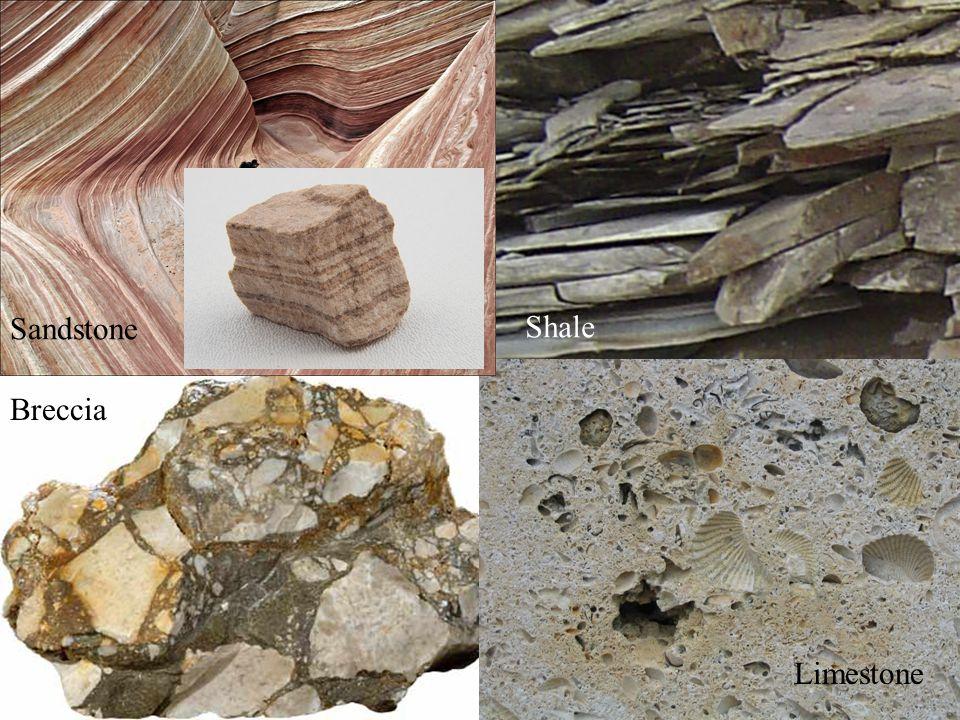Sandstone Shale Limestone Breccia