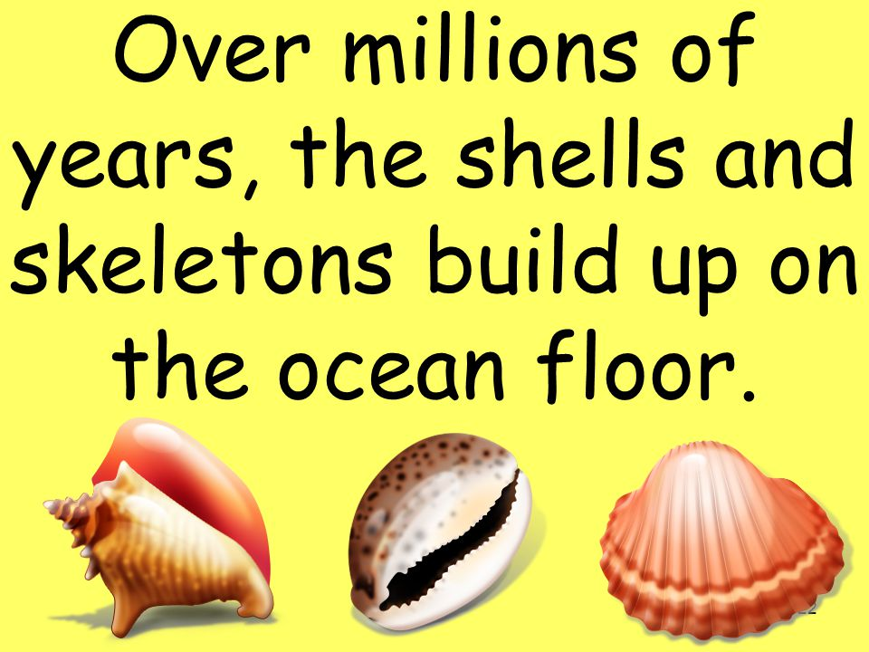 Over millions of years, the shells and skeletons build up on the ocean floor.