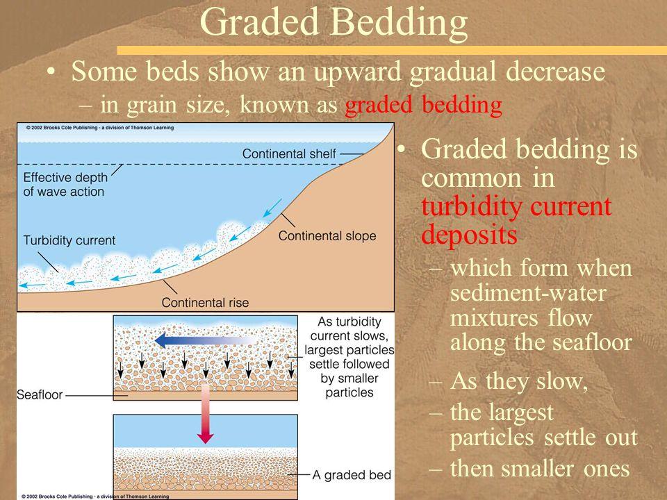 Graded Bedding Some beds show an upward gradual decrease