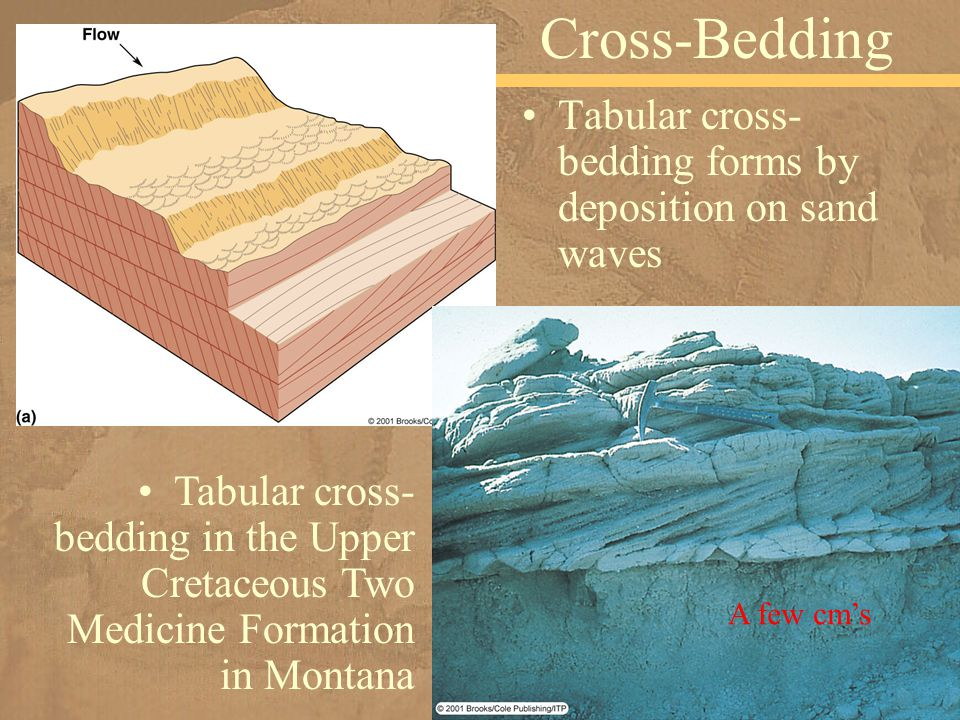 Cross-Bedding Tabular cross-bedding forms by deposition on sand waves