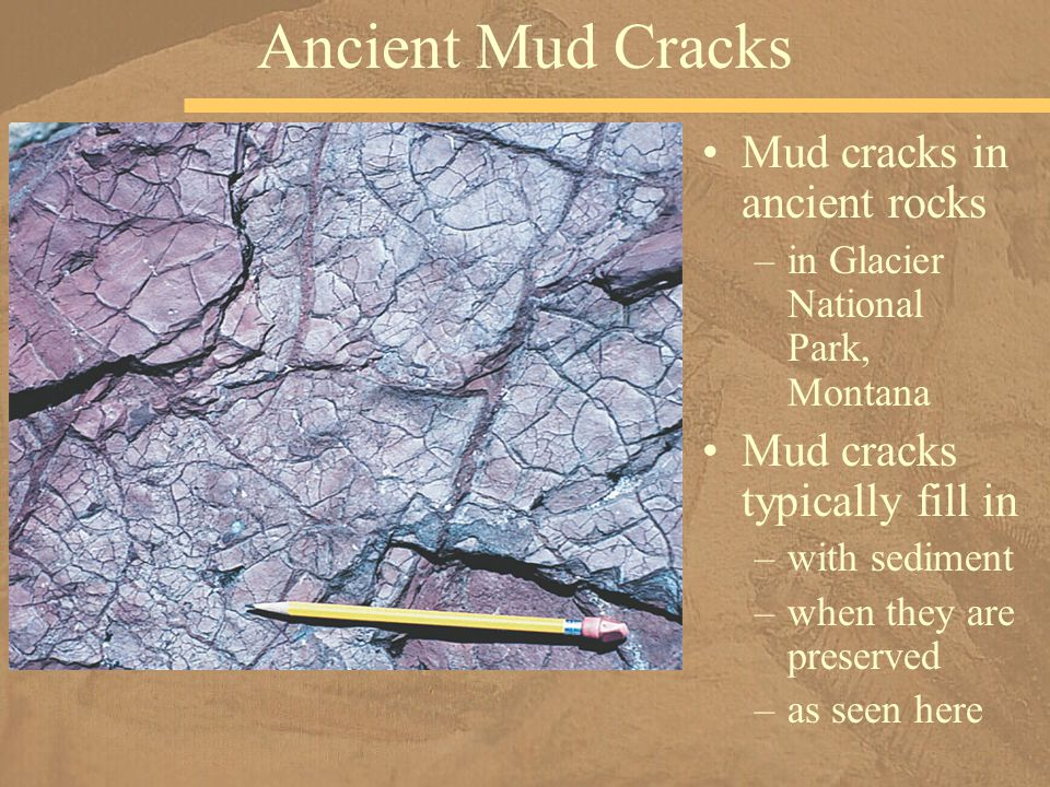 Ancient Mud Cracks Mud cracks in ancient rocks