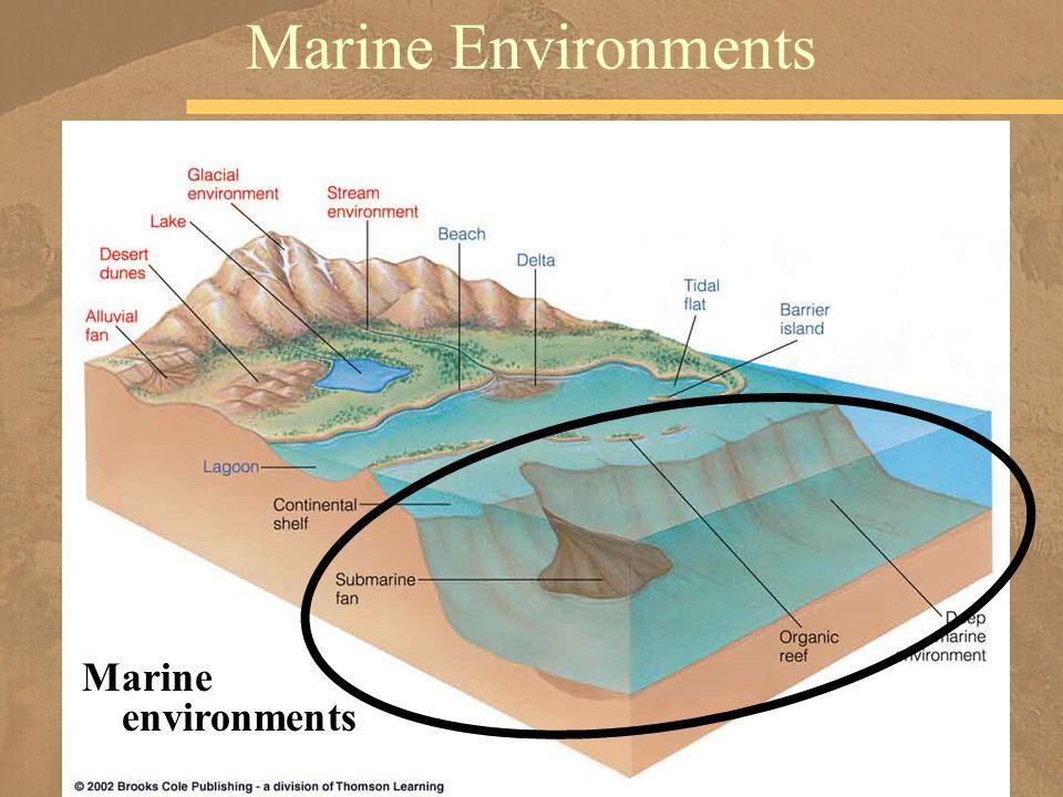 Marine Environments Marine environments