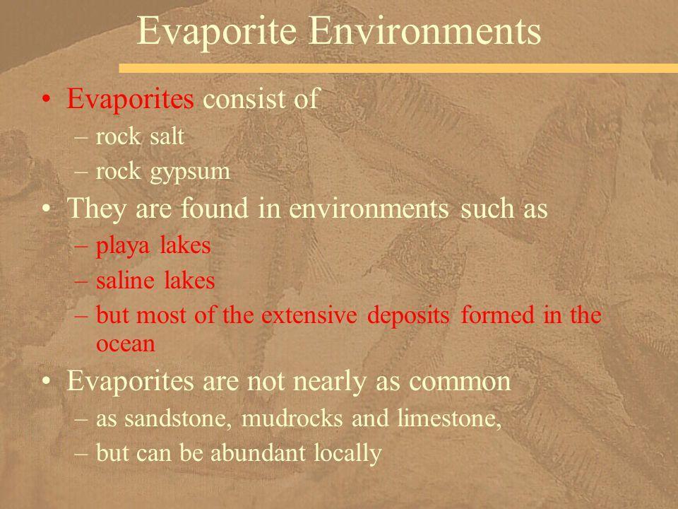 Evaporite Environments
