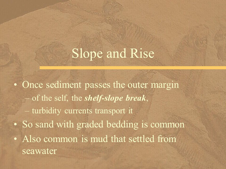 Slope and Rise Once sediment passes the outer margin